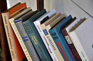 Представители библиотеки №14 пригласили слушателей на презентацию книги. Фото: Анна Быкова
