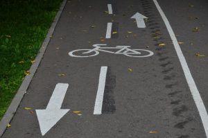 Временная велополоса появилась на Лесной улице. Фото: Анна Быкова