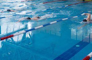 Турнир по плаванию проведут в районном университете. Фото: сайт мэра Москвы