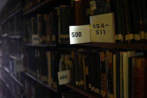 Около 4 млн книг выдали библиотеки по единому читательскому билету.Фото: архив, «Вечерняя Москва»