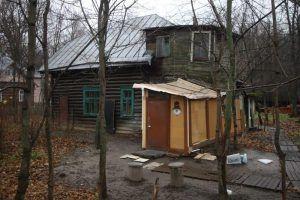 Пожилым москвичам помогут с отоплением дач дровами и углем. Фото: Антон Гердо, «Вечерняя Москва»