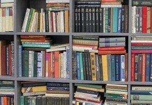 День русского языка отметят сотрудники библиотеки №14. Фото: сайт мэра Москвы