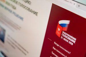 Массух: Число проголосовавших по Конституции онлайн превысило 1 млн человек. Фото: сайт мэра Москвы