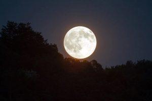Онлайн-программу о Луне подготовят сотрудники районного центра детского творчества. Фото: pixabay.com